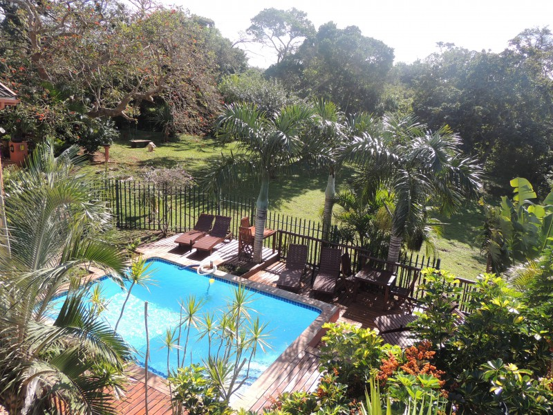 photo - ELEPHANT COAST GUESTHOUSE